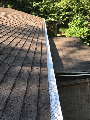 Gutters Cleaned & Gutter Guards Installed in Milton, DE (2)