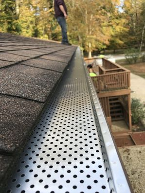 Gutter Guards in Smyrna, DE (1)