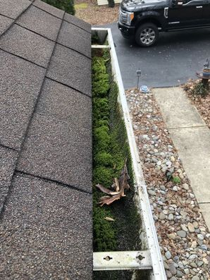 Before & After Gutter Guards in Lewes, DE (1)