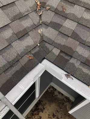 Gutter Guards Installed on House in Milton, DE (3)