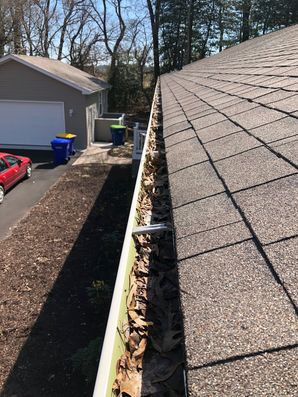 Gutter Guards in Millsboro, Delaware (1)
