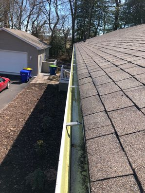 Gutter Guards in Millsboro, Delaware (2)