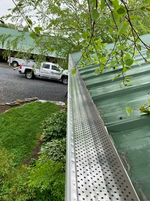 Gutter & Gutter Guard Installation in Lewes, DE (1)