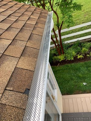 Gutter & Gutter Guard Installation in Lewes, DE (5)